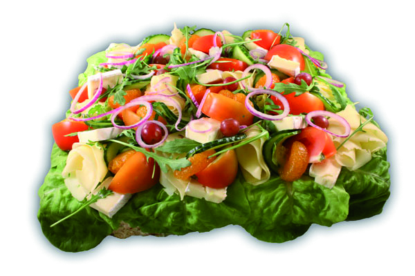 Provance/veg– Innehållsförteckning;MJÖLK, VETEMJÖL, vatten, creme fraiche, sallad, brieost, tomat, GRÄDDE, lime, vegetabilisk olja, gurka, vindruva, paprika, vitkål, purjolök, rödlök, mandarinklyftor, ÄGGULA, ruccolasallad, socker, VETEGLUTEN, vegetabilisk olja (palm,raps,HAVRE), modifierad stärkelse, salt, lök, jäst, RÅGSKÅLLNING, druvsocker, MJÖLKPROTEINER, stabiliseringsmedel, ättika, stabiliseringmedel E 412, stabiliseringsmedel E415, citronkoncentrat, konserveringsmedel E202, konserveringsmedel E211, färgämne E160a, surhetsreglerande medel E270, jästextrakt, mononatriumglutamat, MJÖLKSOCKER, vitlök, kiseldioxid, SELLERI, mjölbehandlingsmedel E300, ingefära, kryddor, spiskummin, svartpeppar, klumpförebyggande medel E551, SELLERIFRÖ, arom, konserveringsmedel (E251), LÖPE, stabiliseringsmedel (E407,E509), vitamin A och D.